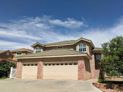 St George Single Family Home For Sale: 295 S 2100 E