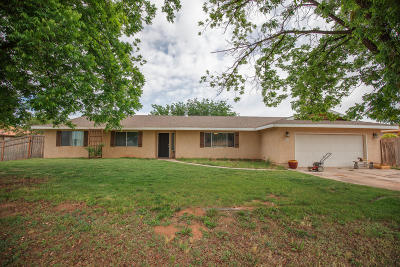 Hurricane Single Family Home For Sale: 746 W 1500 S