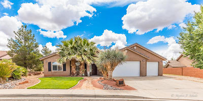 Ivins Single Family Home For Sale: 537 S Praya Dr