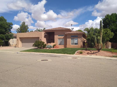 St George  Single Family Home For Sale: 2287 E 160 S