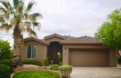 St George  Single Family Home For Sale: 2563 Laquinta