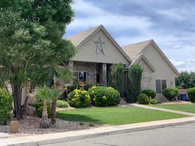 St George  Single Family Home For Sale: 1972 Rustic Dr