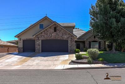 Washington Single Family Home For Sale: 2053 S Great Basin