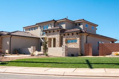 St George Single Family Home For Sale: 2541 Arbor Dr