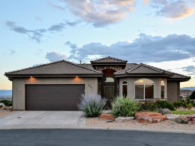 Washington Single Family Home For Sale: 481 W Omni Ln
