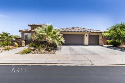 Ivins Single Family Home For Sale: 355 S Chuckwalla Ln