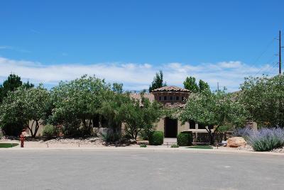 Washington Single Family Home For Sale: 2081 S Great Basin Dr