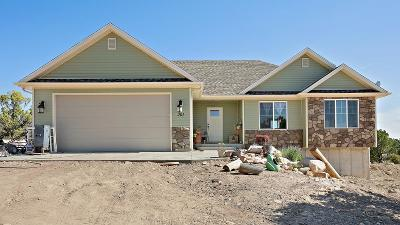Kanarraville UT Single Family Home For Sale: $420,000