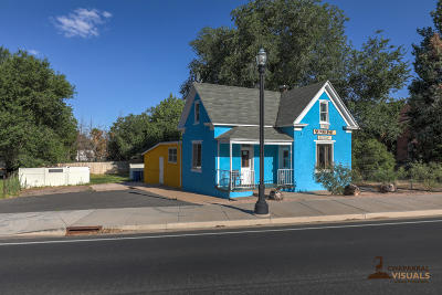 Hurricane  Single Family Home For Sale: 65 N State St