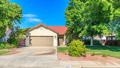 St George  Single Family Home For Sale: 1209 N 1610 W Cir