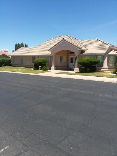 St George  Single Family Home For Sale: 2063 S Fairway Hills Dr
