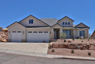Washington Single Family Home For Sale: 1006 E High Noon Cir
