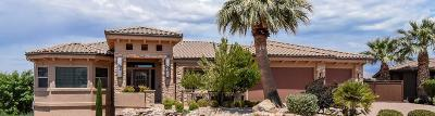 St George Single Family Home For Sale: 1608 S Agate Cir