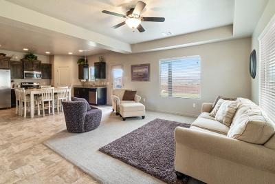 St George Single Family Home For Sale: 3143 E 2805 S