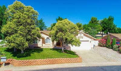Santa Clara Single Family Home For Sale: 1679 Red Mountain Dr