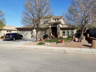 Washington Single Family Home For Sale: 300 W 2350 S