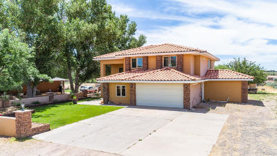 St George Single Family Home For Sale: 1453 W Diamond Valley Dr