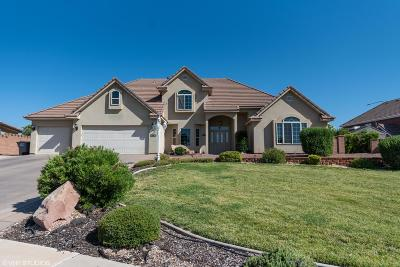 St George Single Family Home For Sale: 1801 E Golda Dr