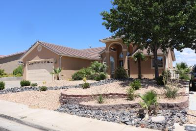 St George  Single Family Home For Sale: 404 N 2110 E