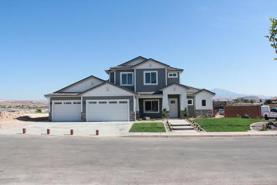 St George Single Family Home For Sale: 3203 E Seegmiller Dr