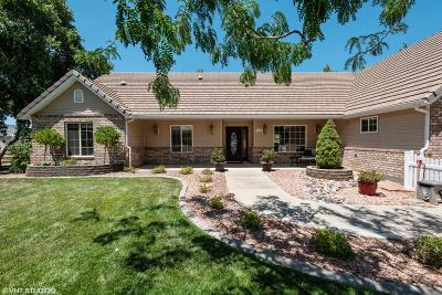 St George Single Family Home For Sale: 1696 W 5400 N