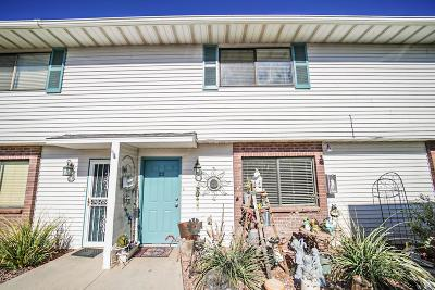 St George UT Condo/Townhouse For Sale: $128,900