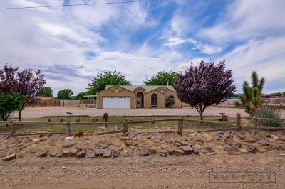 St George  Single Family Home For Sale: 8015 N Sapphire