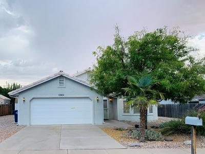 Washington  Single Family Home For Sale: 428 Cholla Dr