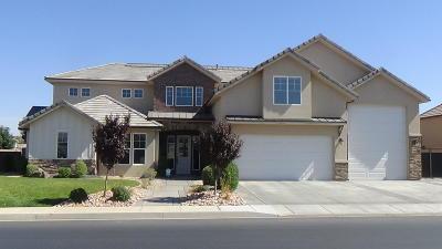 St George Single Family Home For Sale: 2253 E Crimson Ridge Dr