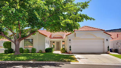 St George Single Family Home For Sale: 39 N Valley View Dr #101