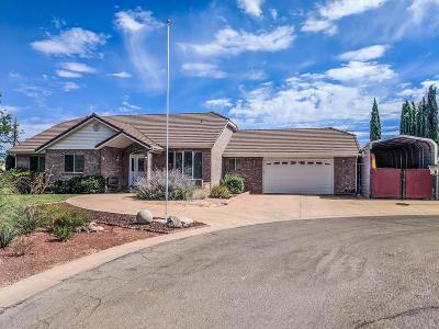 Washington Single Family Home For Sale: 237 N Cottonmill Cir