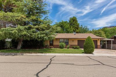 St George Single Family Home For Sale: 1618 W Rose Garden Ln