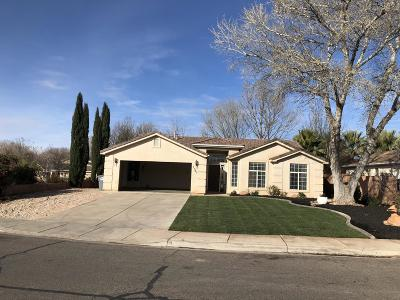 St George Single Family Home For Sale: 1183 N 1510 W