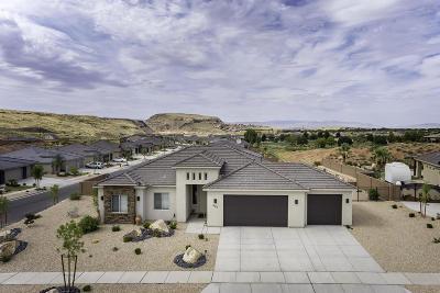 Washington Single Family Home For Sale: 697 N Sage Creek Cir