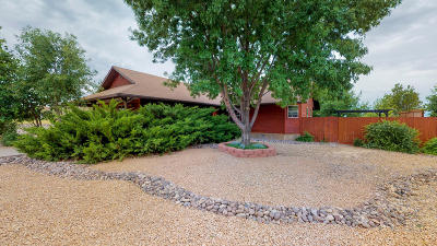 Dammeron Valley Single Family Home For Sale: 825 E Homestead Dr