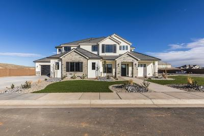 St George Single Family Home For Sale: 2217 E 3670 S