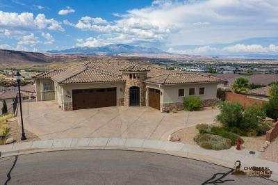 St George Single Family Home For Sale: 2389 S 690 W Cir