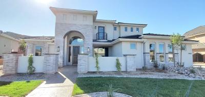 St George Single Family Home For Sale: 2762 E Hazel Dr