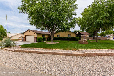 St George Single Family Home For Sale: 2901 Maplewood Way