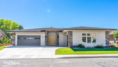 St George Single Family Home For Sale: 23 N Eastridge Dr