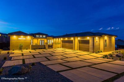 Washington Single Family Home For Sale: 1406 W Silver Feather Cir