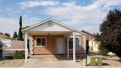 Hurricane Single Family Home For Sale: 4400 S State #98a