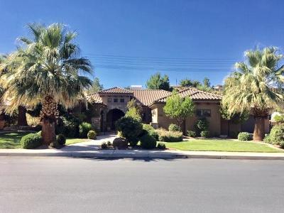 St George Single Family Home For Sale: 2726 E 1400 S