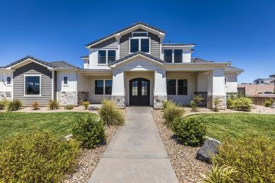 St George Single Family Home For Sale: 2959 E Horseman Park Dr