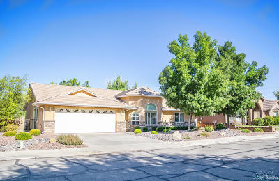St George Single Family Home For Sale: 1309 N 1390 W