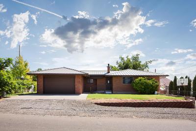 Washington Single Family Home For Sale: 439 S 100 E