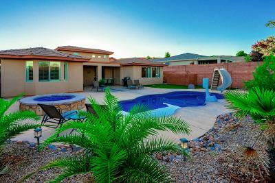 Washington Single Family Home For Sale: 3125 E Grasslands Parkway