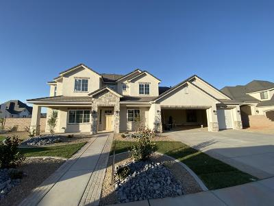 St George Single Family Home For Sale: 2971 E 1140 S