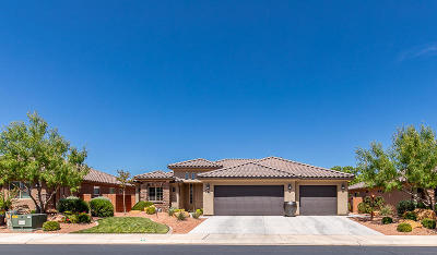 Ivins  Single Family Home For Sale: 265 Desert Rose Way