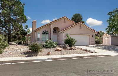 Santa Clara  Single Family Home For Sale: 3101 Dutchman Dr